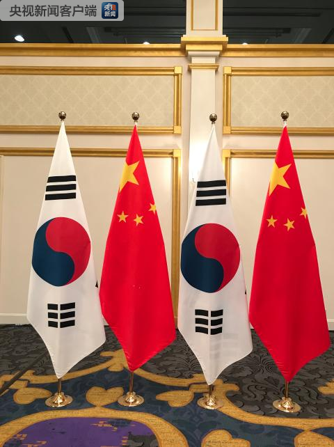 会见现场的中韩两国国旗(央视记者石伟明拍摄)