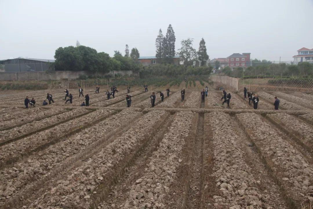 良渚古城勘探工作照。(图片由杭州良渚遗址管理区管理委员会提供)