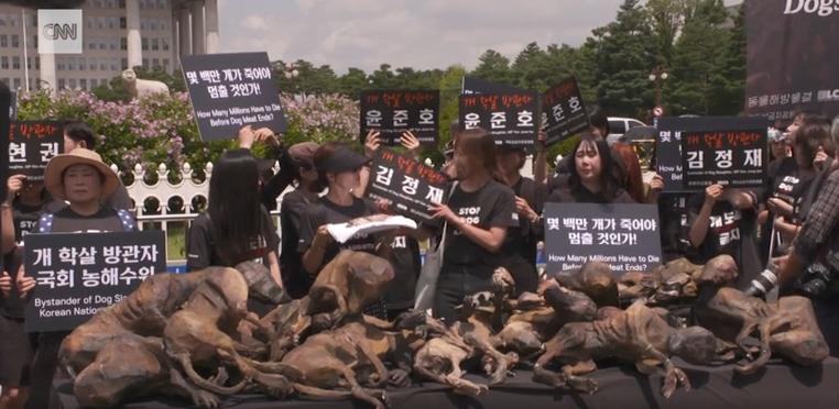 抗议动保人士 韩国狗肉业者当场