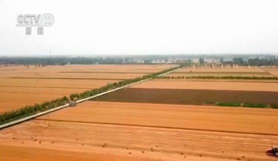 农业农村部:上半年农业农村经济运行平稳 稳中向好