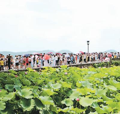 """7月14日,杭州迎来暑期旅游高峰,西湖景区游人如织,断桥成""""人桥""""。  (人民视觉)"""