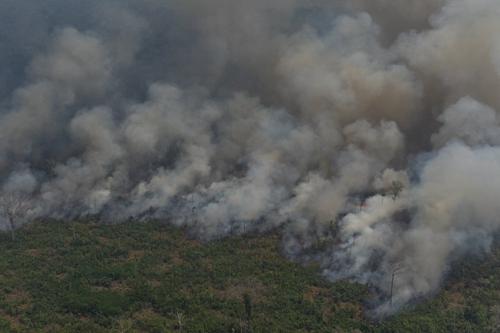 巴西总统下令军队帮忙救火 还在推特上感谢美帮助