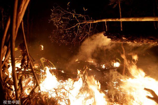 雨林大火持续不灭 南美七国呼吁携手保护亚马孙