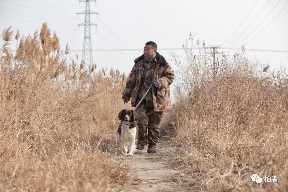"""△12月7日,田志伟和自愿犬""""安迪""""在田间巡视。"""