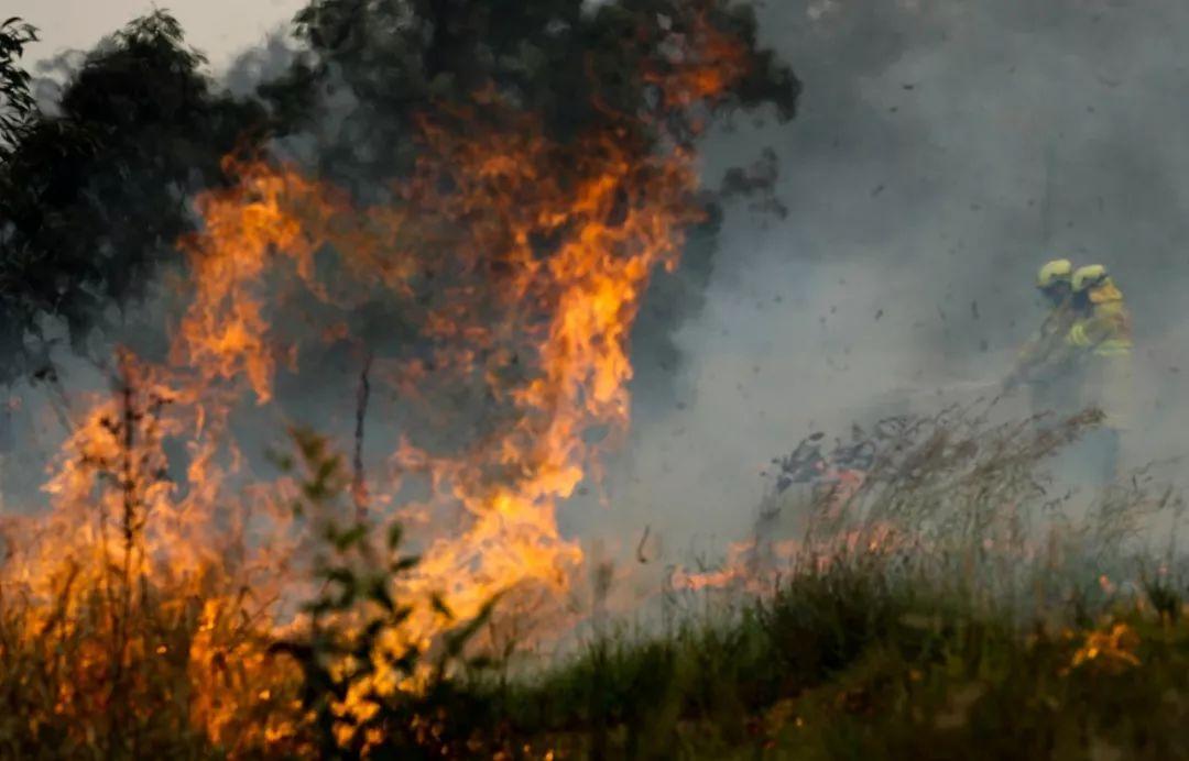 ▲11月11日,在澳大利亚新南威尔士州塔里附近的山地,消防员在扑灭山火。新华社发