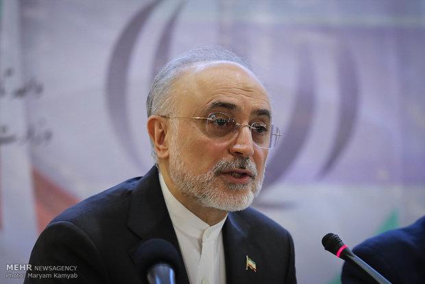 伊朗:阿拉克反应堆的钚元素不用于制造核武器