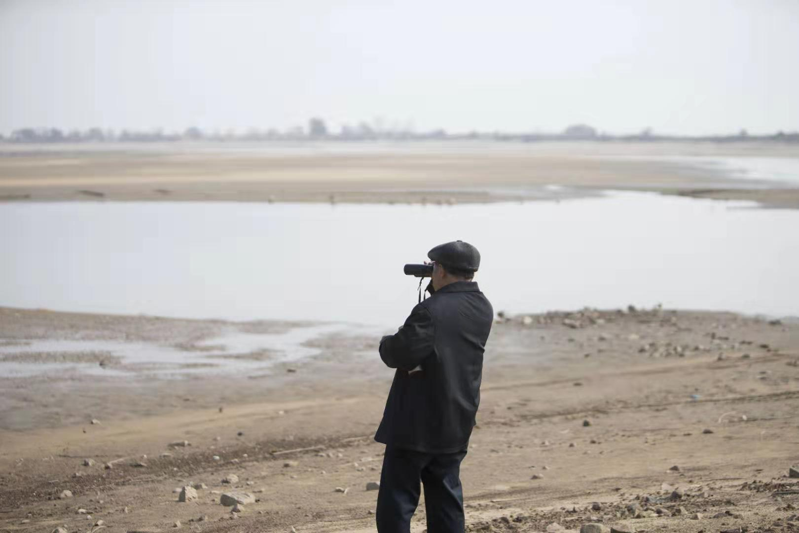"""37年守在鄱陽湖畔 """"候鳥醫生""""在這里救過上萬只候鳥"""