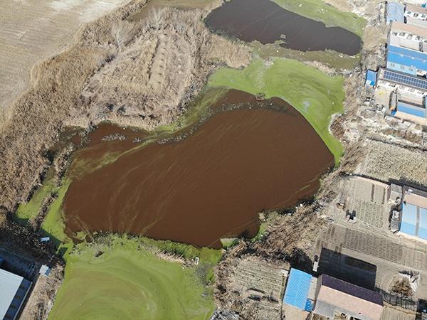 褐色污染坑塘