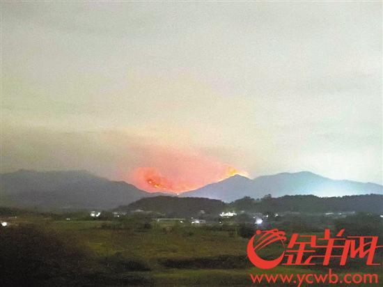 广东:多地多部门力量紧急驰援扑火 目前无人伤亡