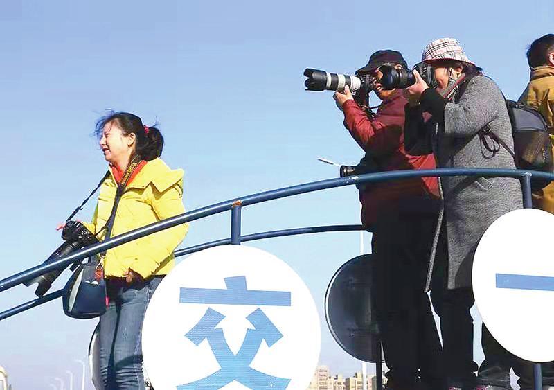 百余名摄影家作家网友高架采风