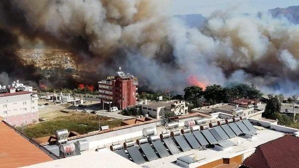土耳其哈塔伊森林大火持续 火势仍未得到控制