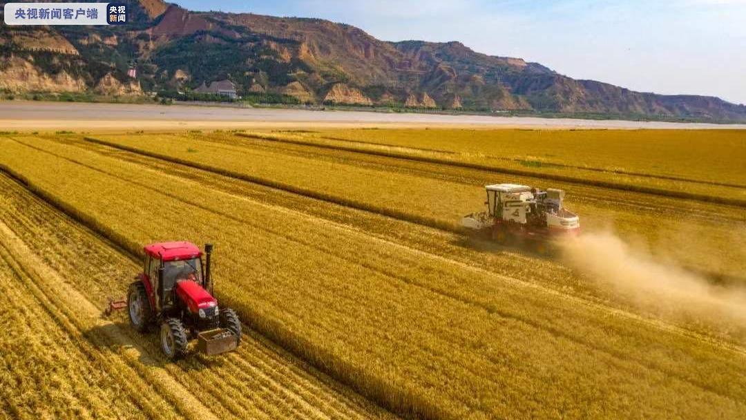 河南省秋作物已收获10660万亩 全省已播小麦532万亩