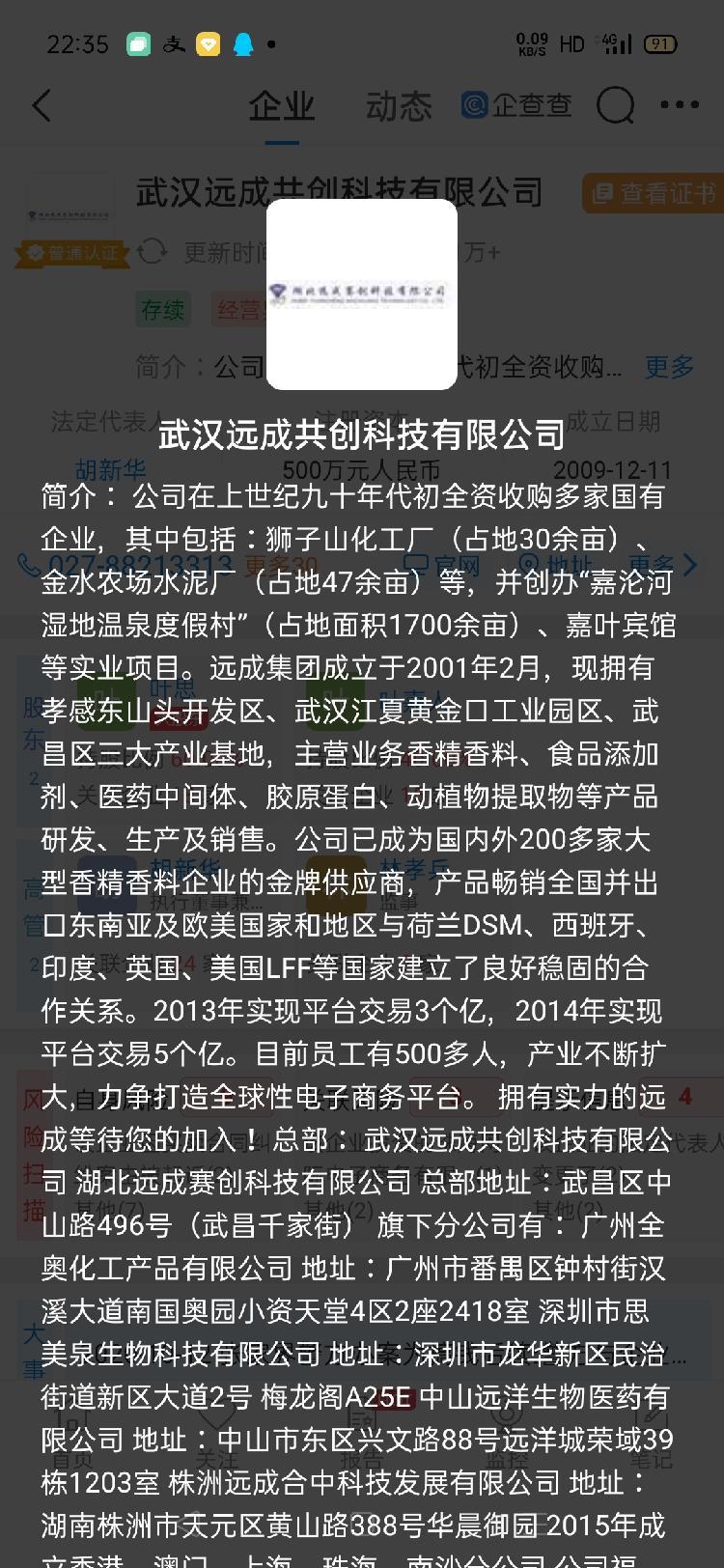 武汉远成公司介绍
