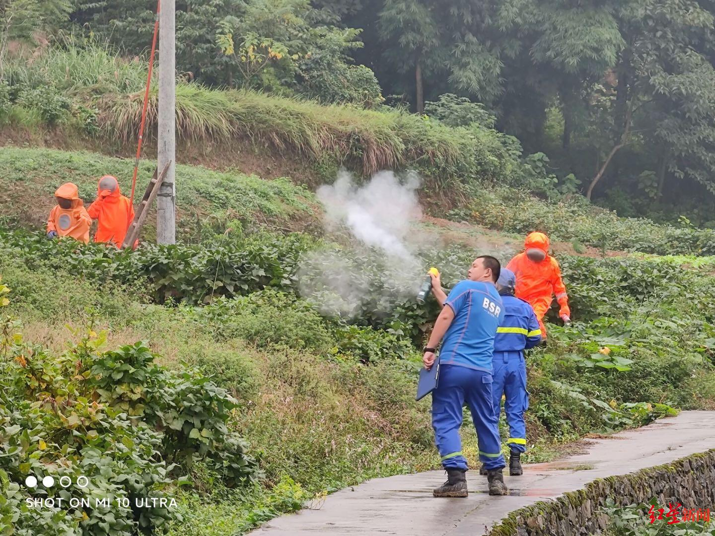 广安蓝天应急救援队帮村民灭蜂