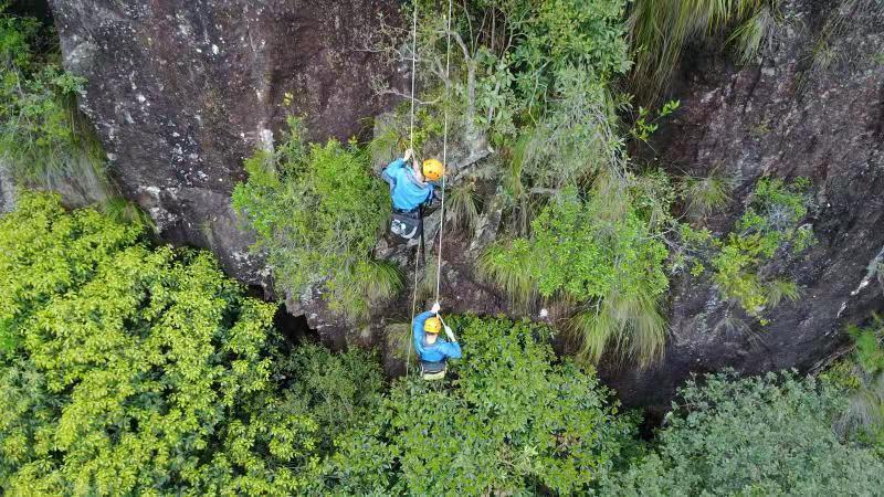 施工人员在密林中进行道路施工勘探。浙江省交通集团供图