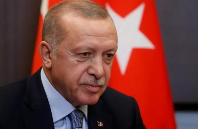 原料图:土耳其总统埃尔众安