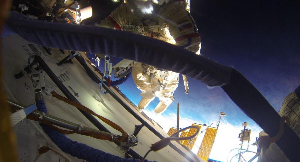 俄罗斯航天集团(俄罗斯卫星通讯社)