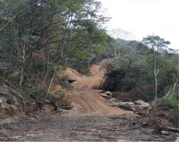 图4:农人山泉公司开设的施工便道