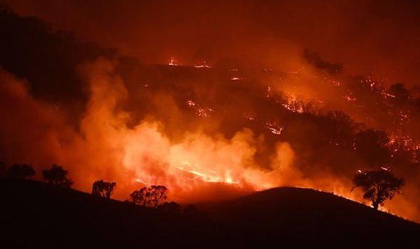 澳大利亚山火持续已有4个月之久,引发全球关注。(每日快报)