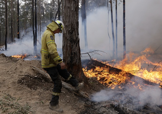 1月12日,在澳大利亚新南威尔士州博达拉邻近,一名消防员稳固防火隔离带。新华社 图