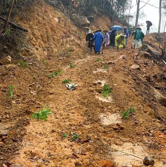 被毁的坡道正在恢复植被。图片来自受访者。