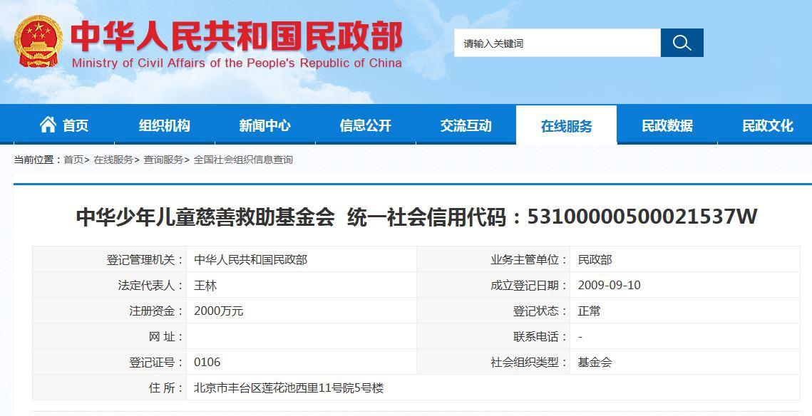 中华儿慈会信息查询 来源:民政部官网