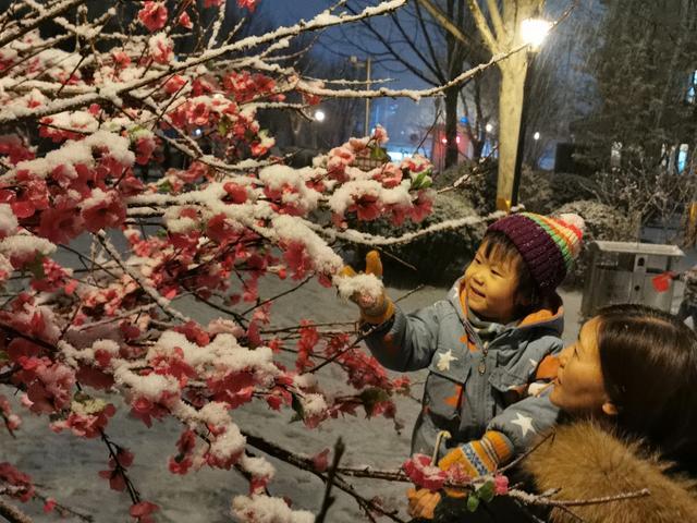 北京最新天气预报:明日山区或有小雪,双休日以晴为主最高温约5℃