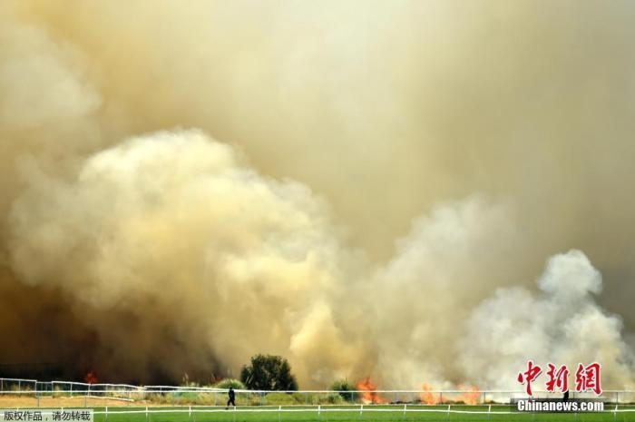 当地时间2019年12月13日,澳大利亚珀斯一板球体育场外,森林大火熊熊燃烧。图为火场上空升起滚滚浓烟。