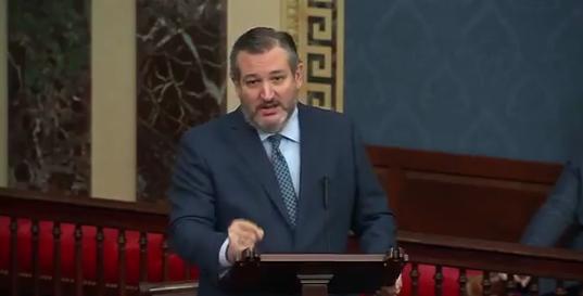 泰德·克鲁兹在会上反对法案 来源:视频截图