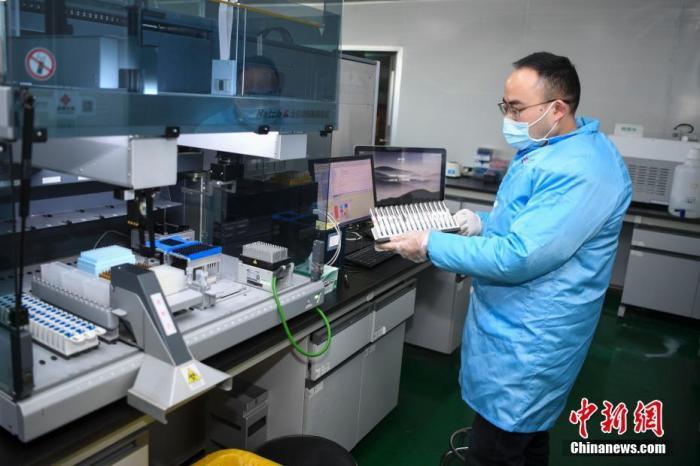 原料图:科研人员正在进走试剂盒进一步研发的实验。中新社记者 杨华峰 摄