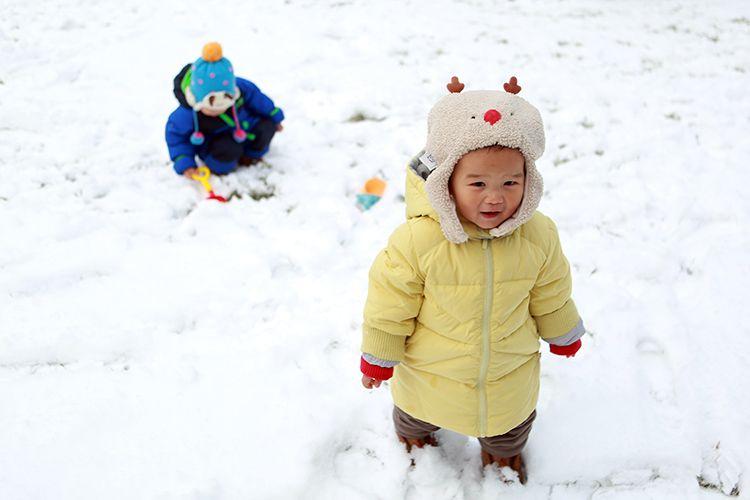 雪中的幼宝宝。