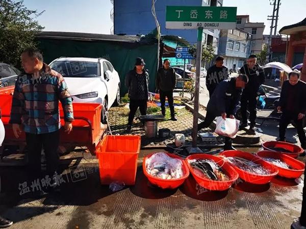 不良商贩往水里加柴油 快死的鱼被逼得又活蹦乱跳