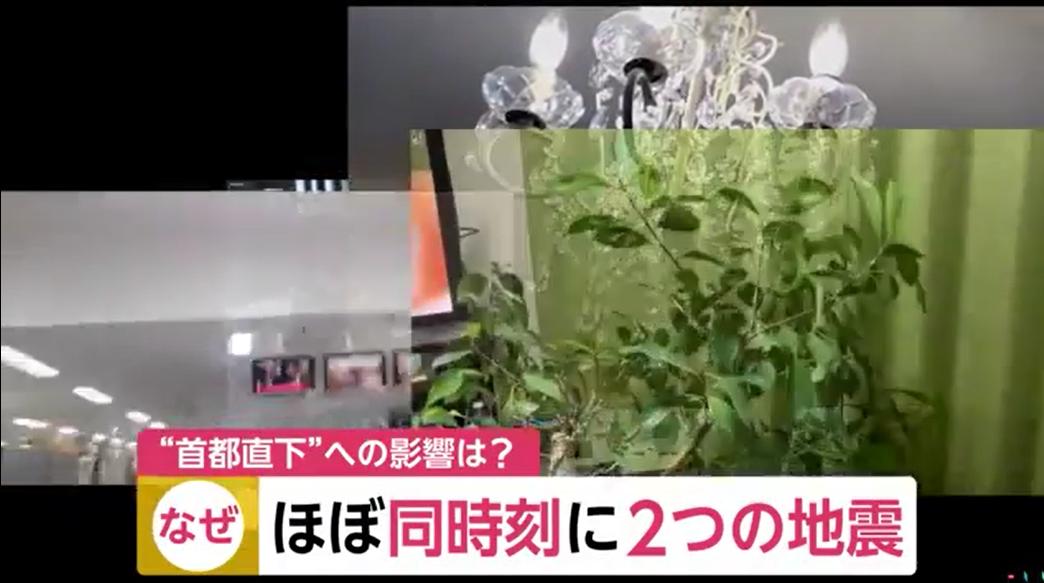图源:富士电视台