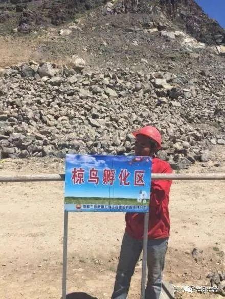 中国简历网