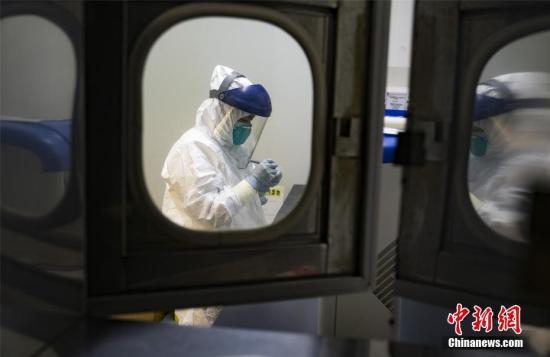 资料图:实验人员正在对样品进行核酸检测。赵春亮 摄