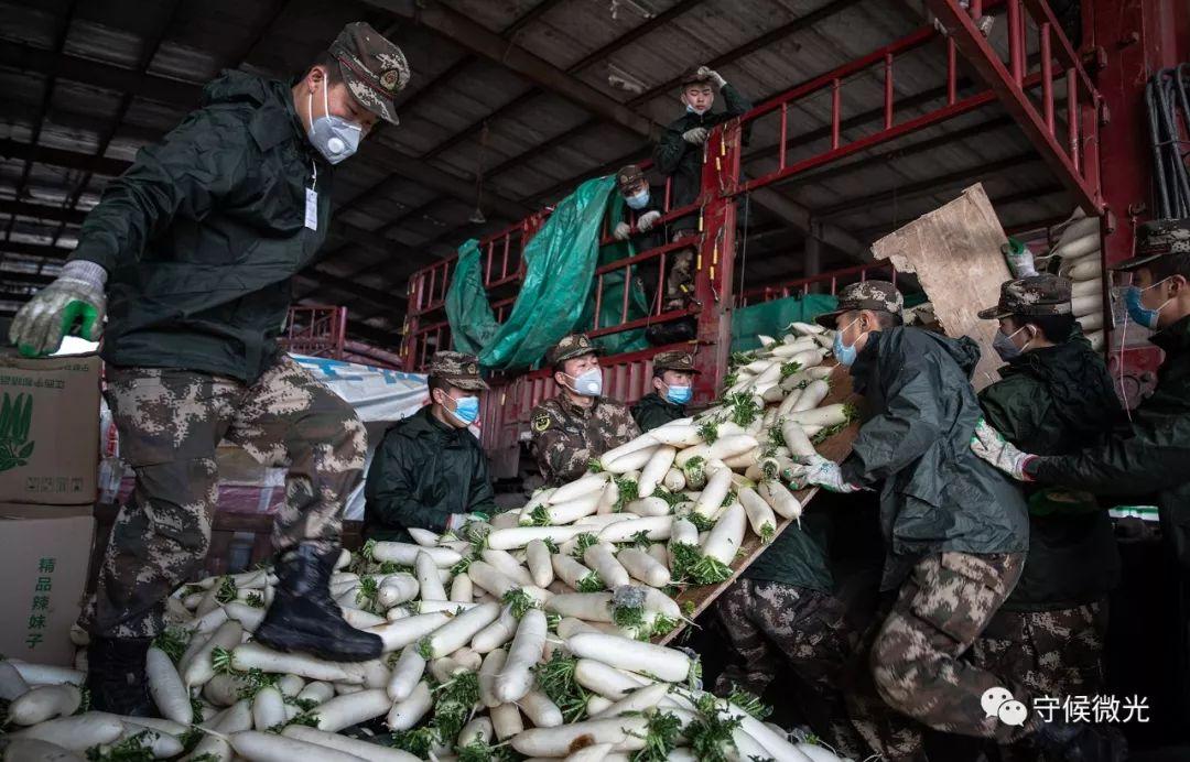 2月17日,湖北省孝感市沙沟蔬果批发市场,做事人员从一辆来自重庆的货车上卸下施舍的白萝卜。据介绍,各地施舍给孝感的蔬果等生鲜物资都在这边荟萃分配。中青报·中青网记者 李峥苨/摄