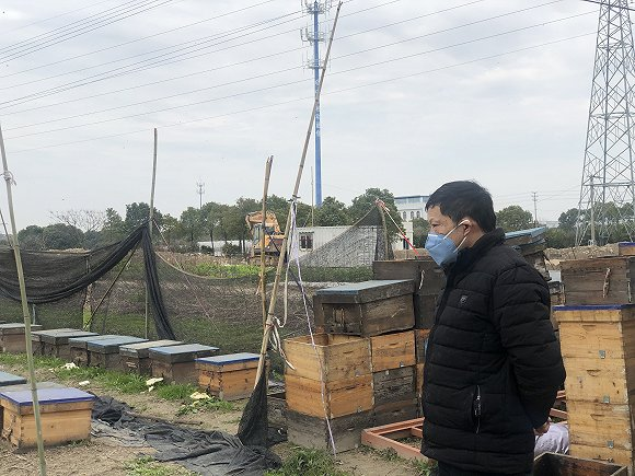 养蜂人屠忠实。(图片来源:张钦)