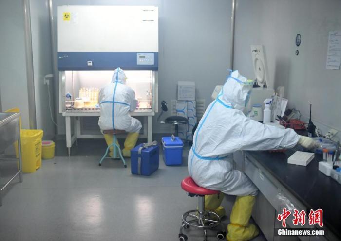 资料图:检测组工作人员进行病毒检测。中新社记者 李佩珊 摄