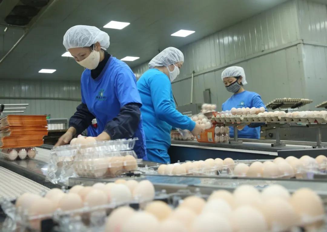 銅陵義安區:安徽圣迪樂防疫生產