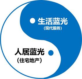 图:蓝光双擎业务布局