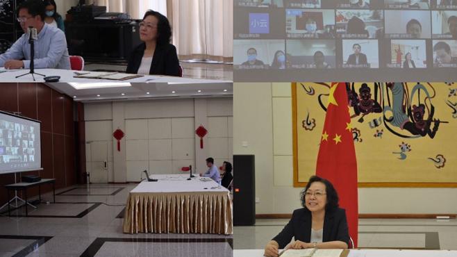 杏彩4中国驻非洲多国使馆举办视频连线活动 分享中国经验联合抗疫