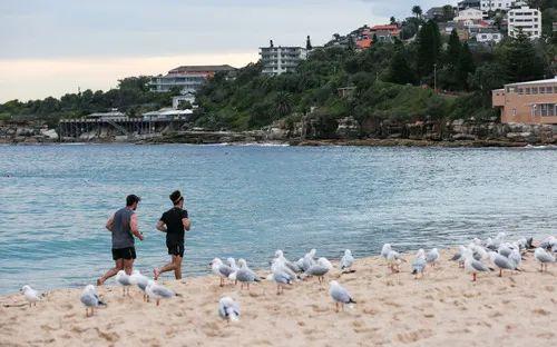 4月20日,人们在澳大利亚悉尼的库吉海滩跑步。新华社记者 白雪飞 摄