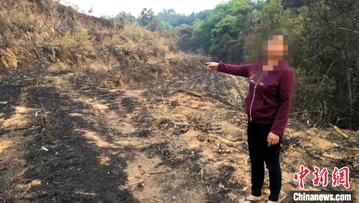 云南陇川森林火灾:村民违规用火烧甘蔗叶 烧毁45公顷森林