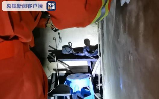 2米眼镜王蛇夜闯贵州一村民家 房主求助消防来捉蛇