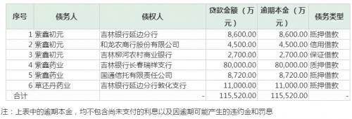 紫鑫药业债务逾期 :合计金额已达11.552亿元 上年末有息负债已超50亿元