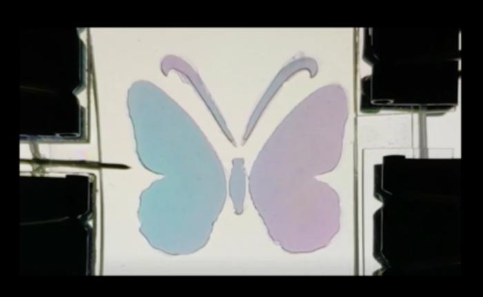 科学家创造一种新型超薄膜变色材料