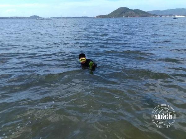 △图为潜水摸查海草床分布边界
