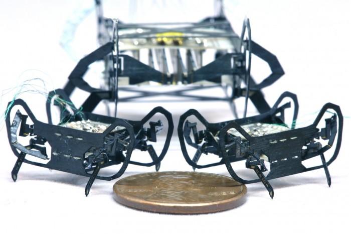哈佛大学研究人员受蟑螂启发打造小巧灵活的行走机器人,重量仅0.3克