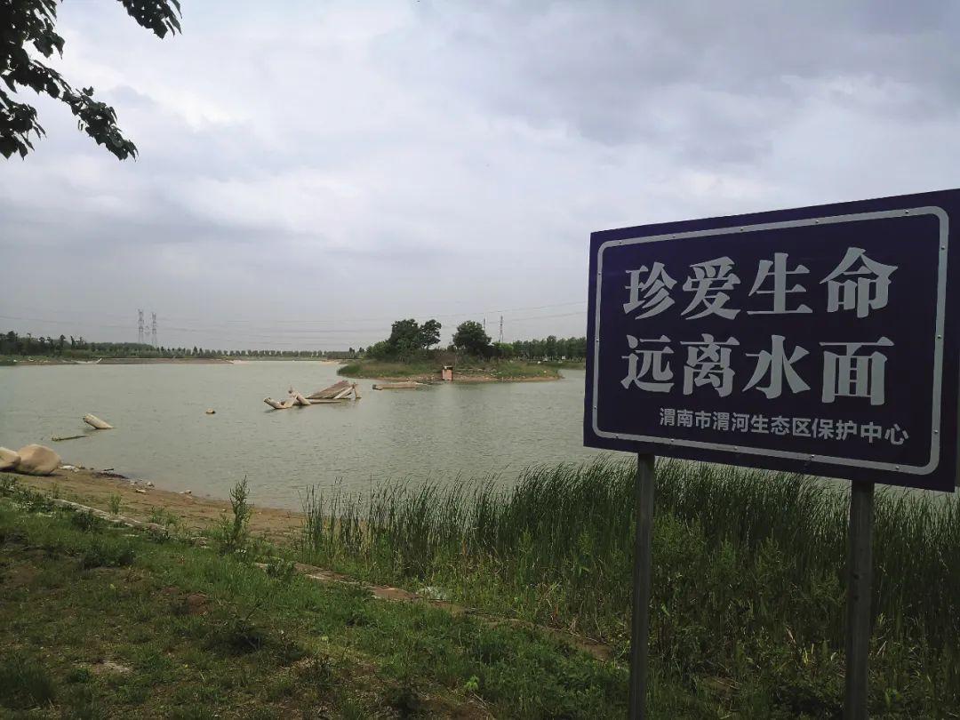 渭河生态公园2019年整改时,通往湖心岛的拱桥被拆掉,没入水中的残碎桥体至今未有人拉走处理。