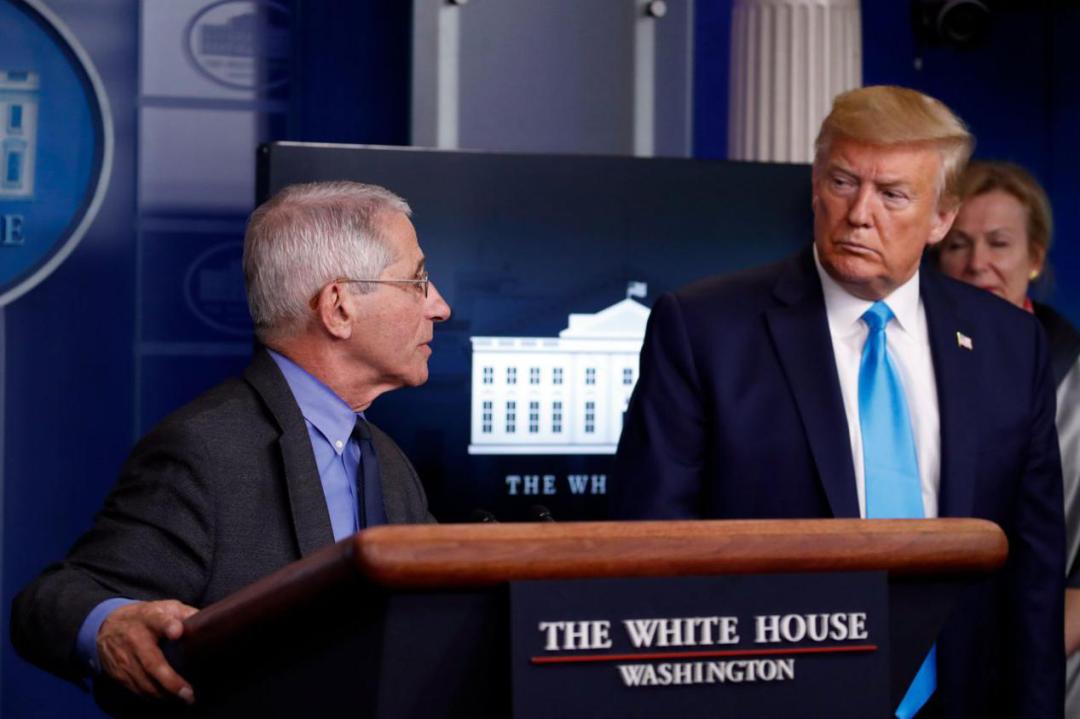 美国总统特朗普与美国首席传染病行家福奇(图源:美联社)
